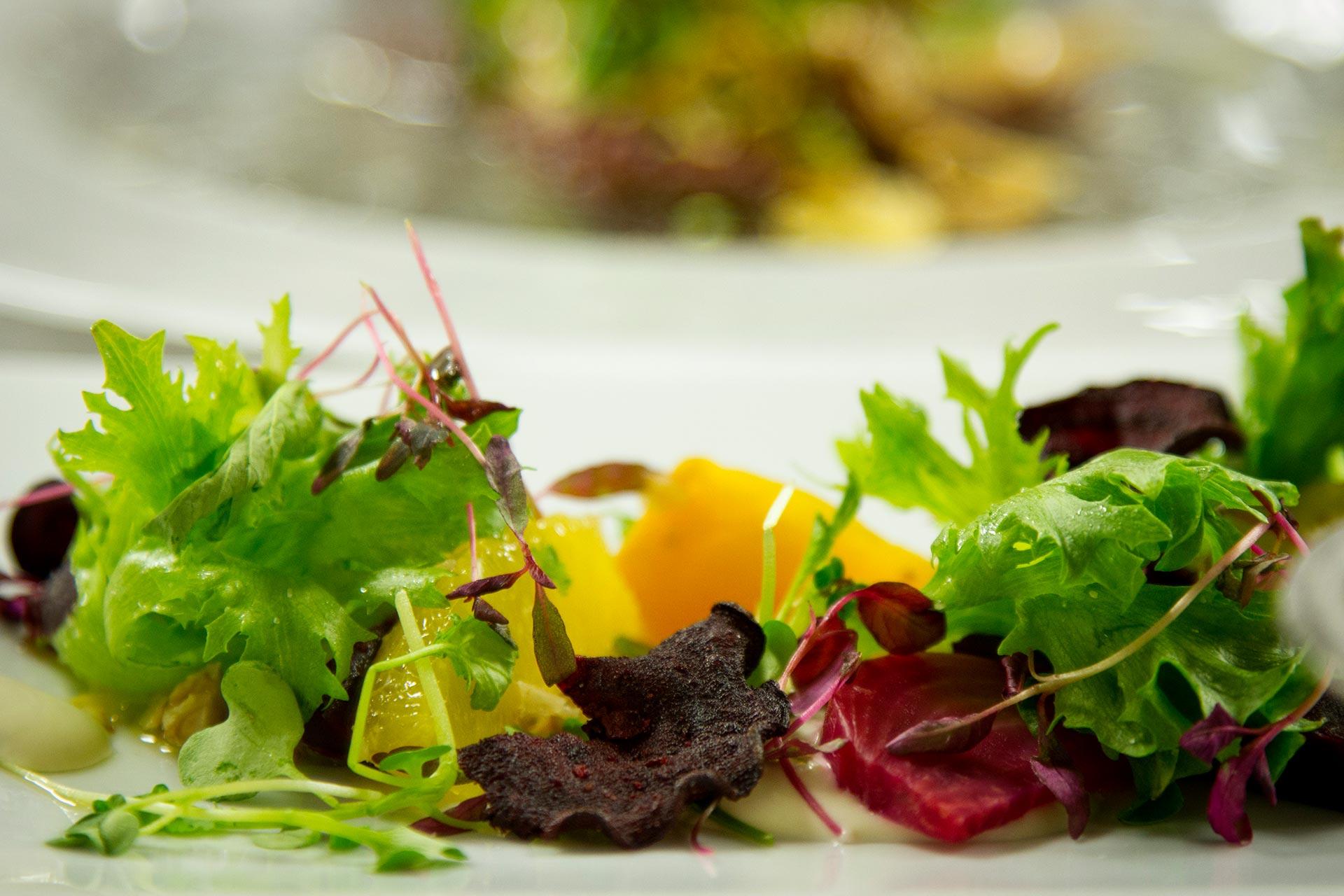 Raikas alkuruokasalaatti ravintola Panoramassa Levillä.