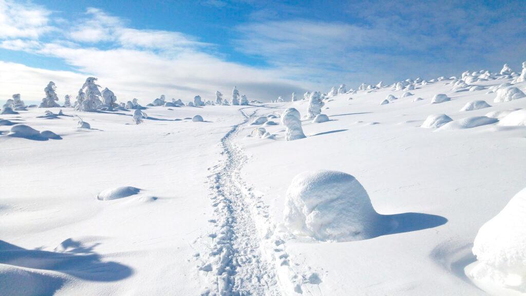 Levin talvipatikkareitit risteilevät kauniissa Lapin talvimaisemissa