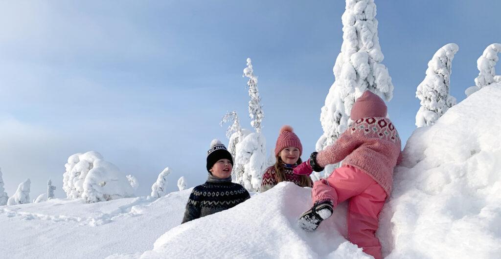 Talven riemua tykkylumisessa maisemassa Lapin Levillä.