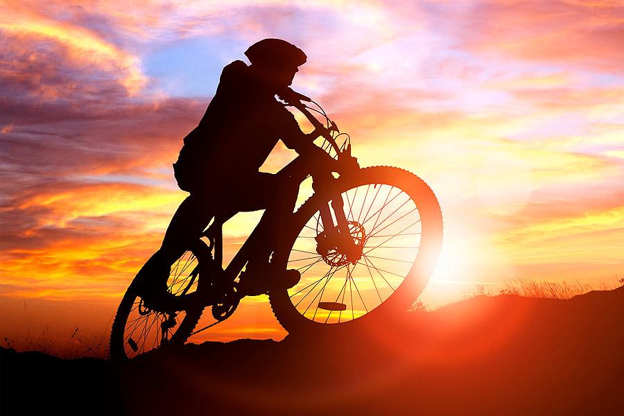 Maastopyöräilijä Levi-tunturilla kesällä.
