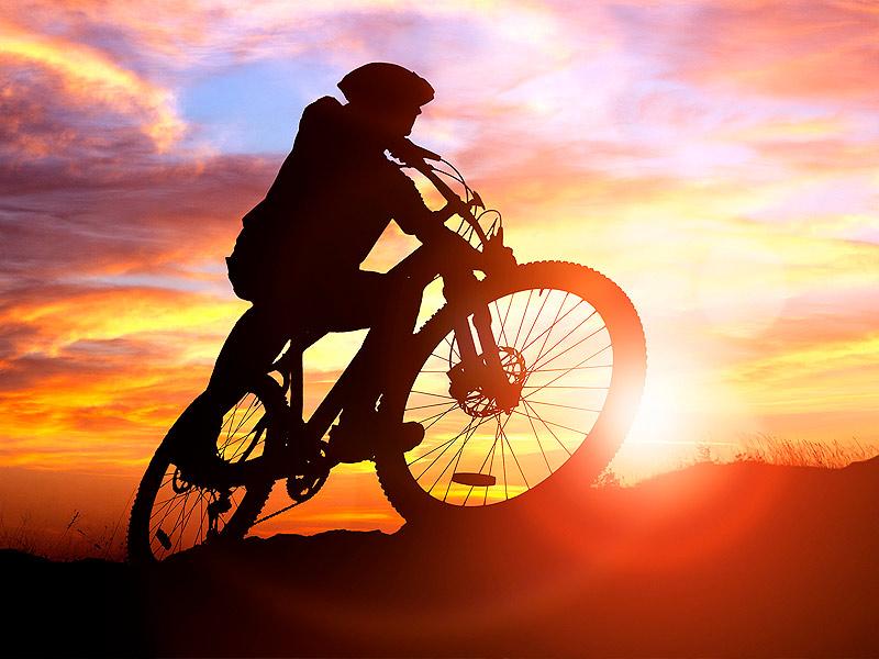 Maastopyöräilijä Levillä kesällä.