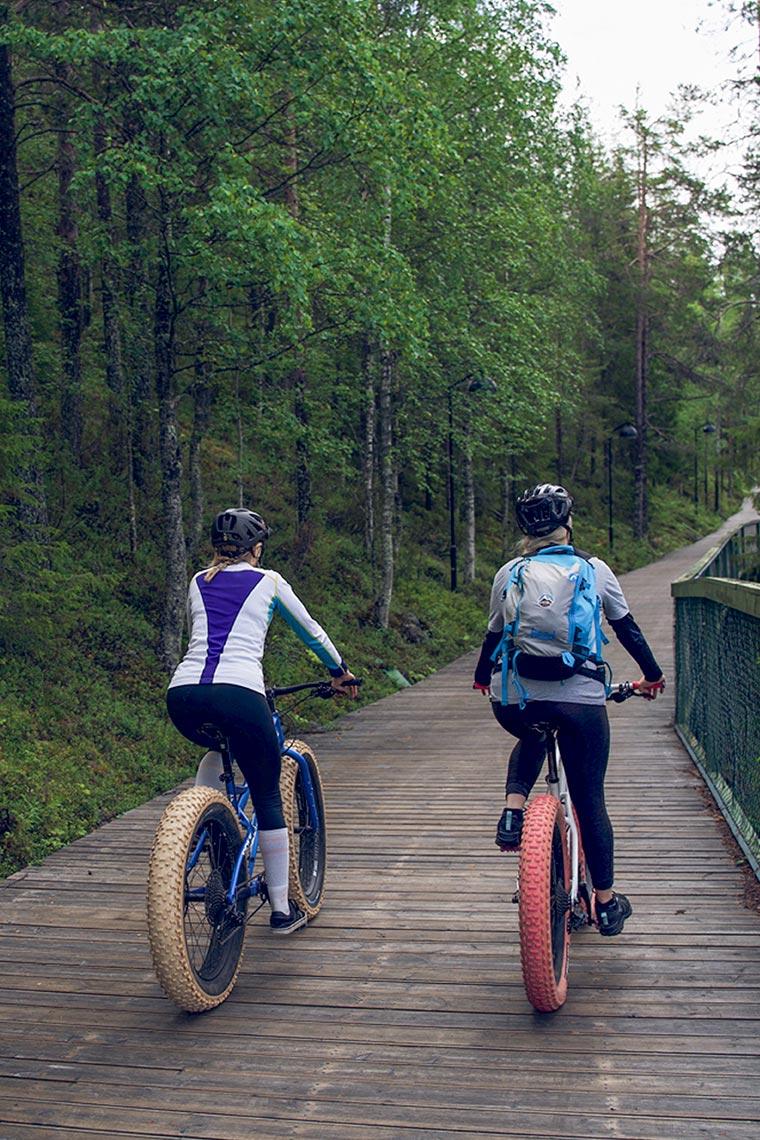 Pyöräilijät Levillä kesällä.